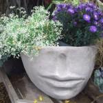 Garden Plant Head