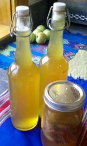 Bottled Kombucha Second Fermentation