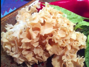 Cauliflower Mushroom Close Up